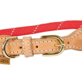 Digby & Fox Reflective Dog Collar in Red