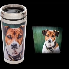 Country Matters Terrier Thermal Mug