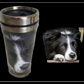 Country Matters Collie Thermal Mug