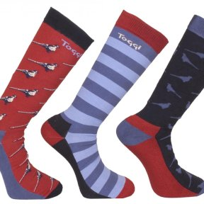 Toggi Mens Socks