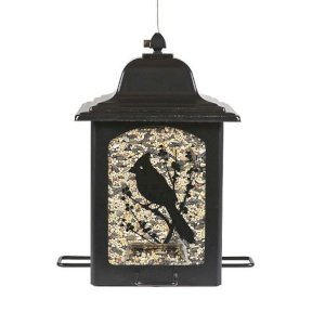 Birds & Berries Lantern Feeder