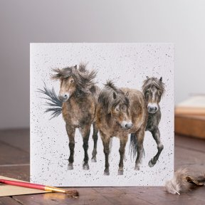Wrendale Country Set 'Three Amigos' Horse Card