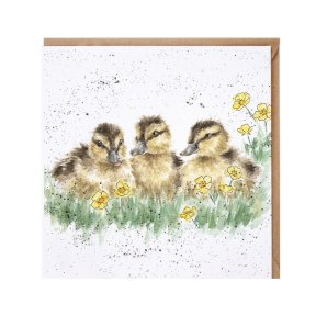 Wrendale Country Set 'Buttercup' Chick Card