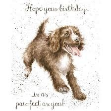 Wrendale Occasions Range 'Pawfect' Dog Birthday Card