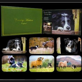 Country Matters Collie Placemats - Set of 6